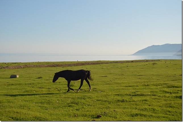 Большое Голоустное - берег Байкала