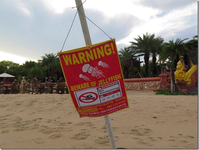 Та самая предупреждаюшая табличка. Jellyfish это медуза