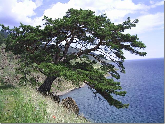 Большая Байкальская тропа - мыс Кадильный
